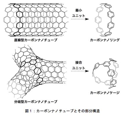 カーボンナノケージの形状